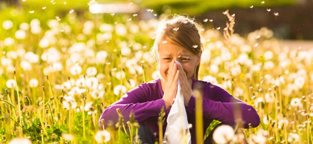 Specialisatie: Allergie Eliminatie